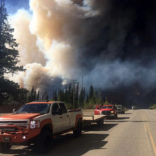 Forest Fire Medical Response